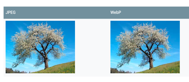 two images of a cherry blossom tree