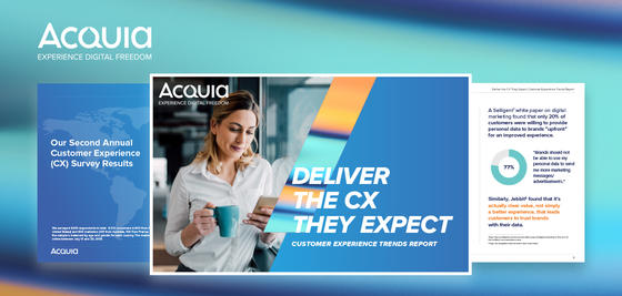 Acquia CX Report