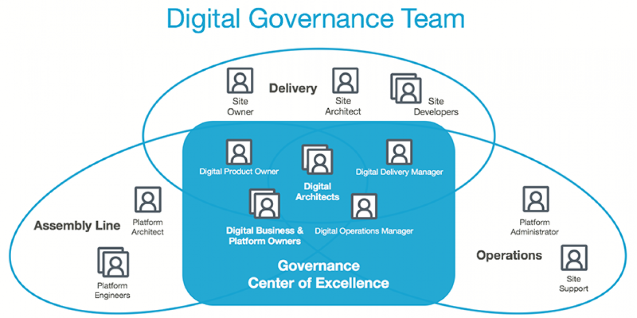 Digital governance team