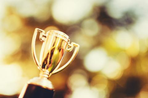Acquia Earns Gold Stevie Award