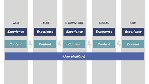 Diagram shows how user data is unified with AgilOne across different platforms listed vertically including web, email marketing, ecommerce, social media, and CRM. [image acquia/dxp-shared-user-data]